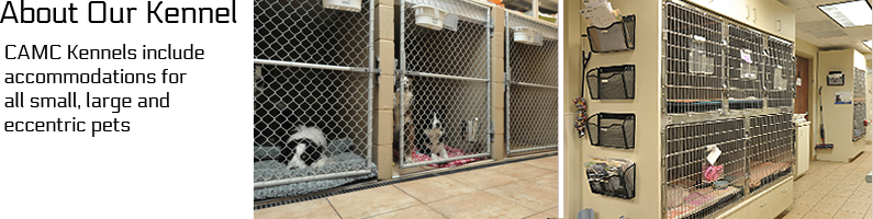 kennel-med-images